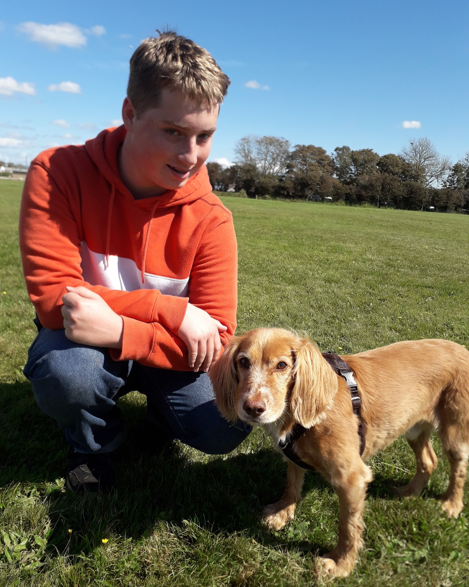 Volunteer with Dogs - SPPOT, Haverfordwest